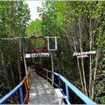 Ecotourism Tanjung