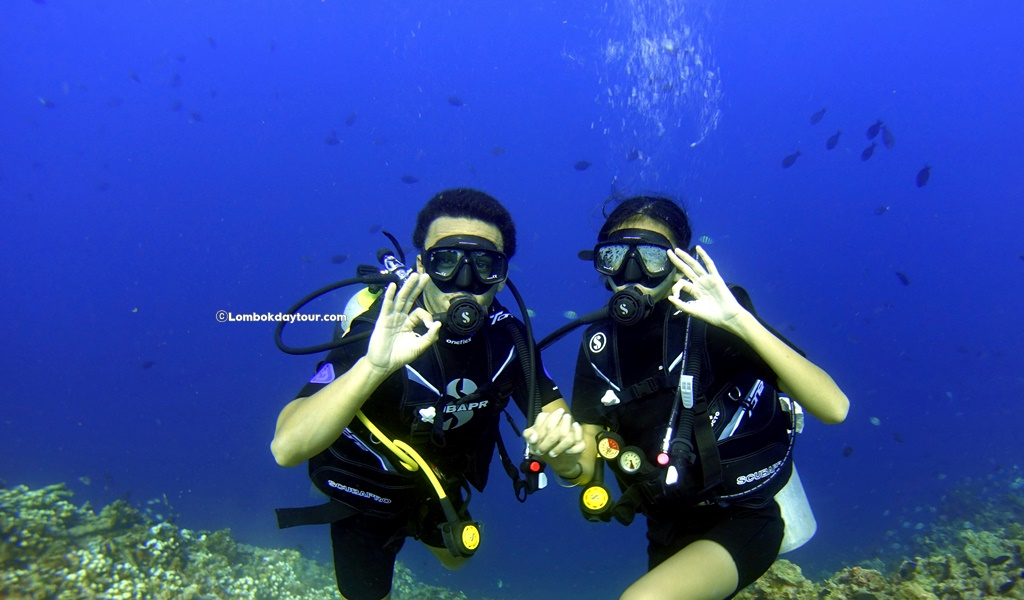 discovery dive lombok
