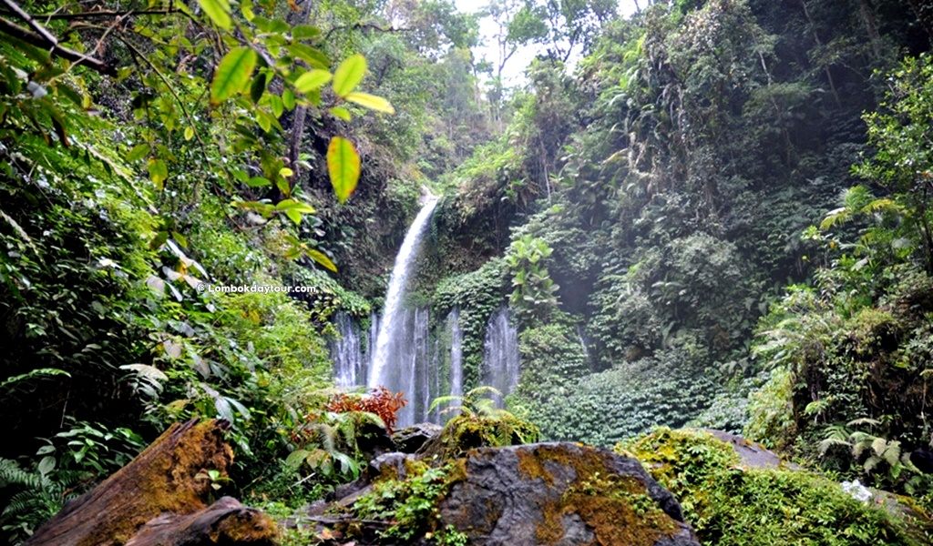 Rinjani Waterfall Tour