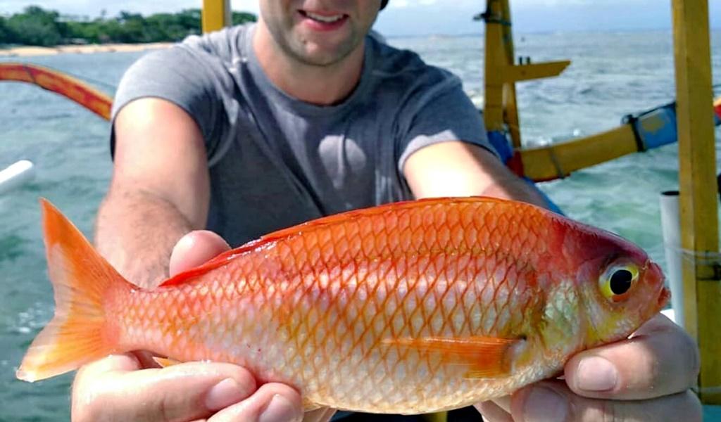Lombok Fishing Tour