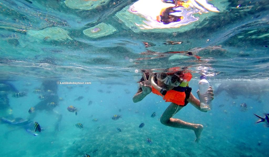 Gili Nanggu Snorkeling Tour