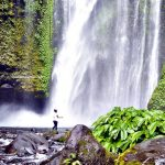 """Layered water flows, cool air and green scenery are attractions that you can enjoy when you visit Sendang Gile and Tiu Kelep waterfall. Lombok Indonesia has magnificent natural mountain charm which combined into a calming rhythm, with the shady trees. These two waterfalls form water stairs in a single flow. The blowing mist which fills the surround valley will feel so fresh when it touches your skin. According to local people, Tiu Kelep name is taken from Sasak language. """"Tiu"""" means pool, and """"Kelep"""" means fly. While Sendang Gile name is taken from a legend which tells about the story of a prince which was chased by a crazy lion. He ran into a wood and hide behind a waterfall. This waterfall then called Sendang Gile waterfall. The two waterfalls are believed by the local people as a cure to many diseases and can make someone looks young all the time. The local people also believe that the water flow will come bigger if people around are talking loudly. These two Lombok waterfalls are located in the foot of Rinjani mount which also a part of track to this highest mount in Lombok Indonesia. Administratively, these lombok waterfall located in Senaru village, about 2,5 hours from Mataram city with personal car. It is open daily. To enjoy these waterfalls, you have to buy entrance ticket IDR 10.000/pax. After that you can straightly go to Sendang Gile or Tiu Kelep waterfall first. Once you got there, you will see the mist which forms a rainbow when it hit by the sunlight. Tiu Kelep waterfall is above Sendang Gile waterfall, and it becomes the continuity of the Tiu Kelep. The flows of Sendang Gile is passing layered rock steep bank with height around 30 m. the layered steep bank is covered with leaves and fern plants. Sendang Gile waterfall is closer to the entrance of waterfall area. To get there, only take 15 minutes by foot. Because it closer to the entrance, it is visited by more visitors, either its foreign or domestic one. If you don't like tracking, Sendang Gile wa"""